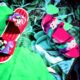 Lizzy Gold (Colorful Children Footwear)